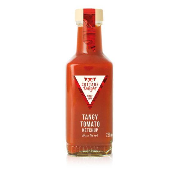 Salsa Tomato Ketchup | Salsa Tomato Ketchup